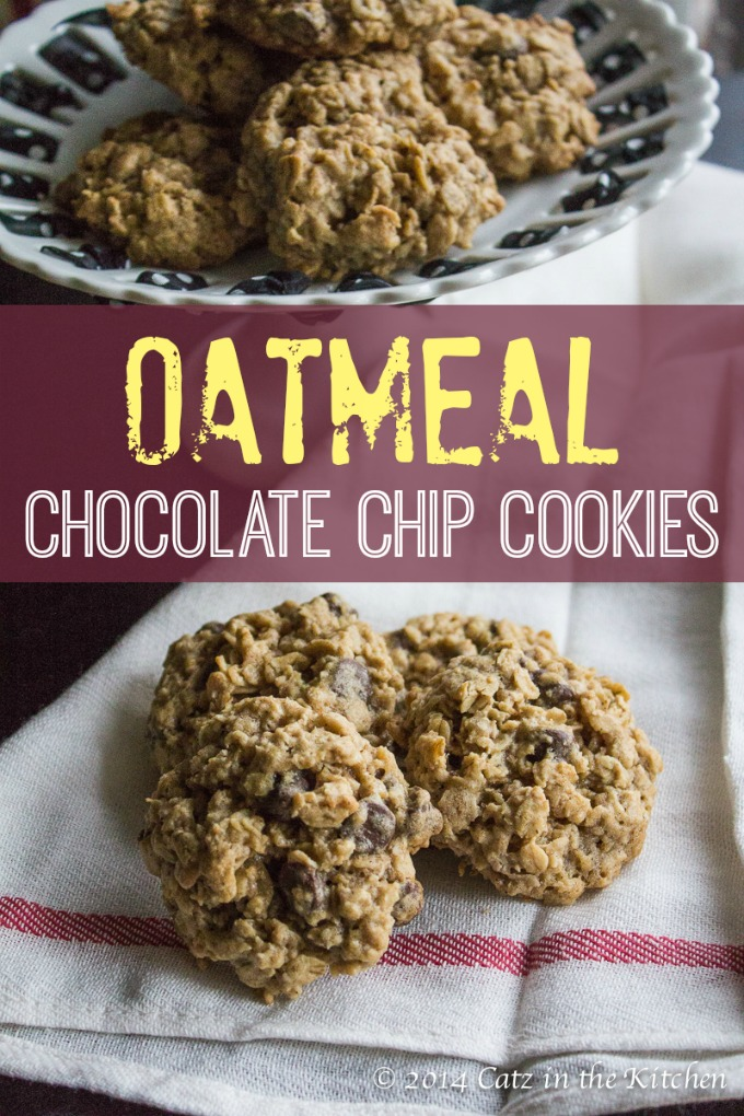 The Best Oatmeal Chocolate Chip Cookies   Catz in the Kitchen   catzinthekitchen.com   #chocolate #oatmeal #cookies