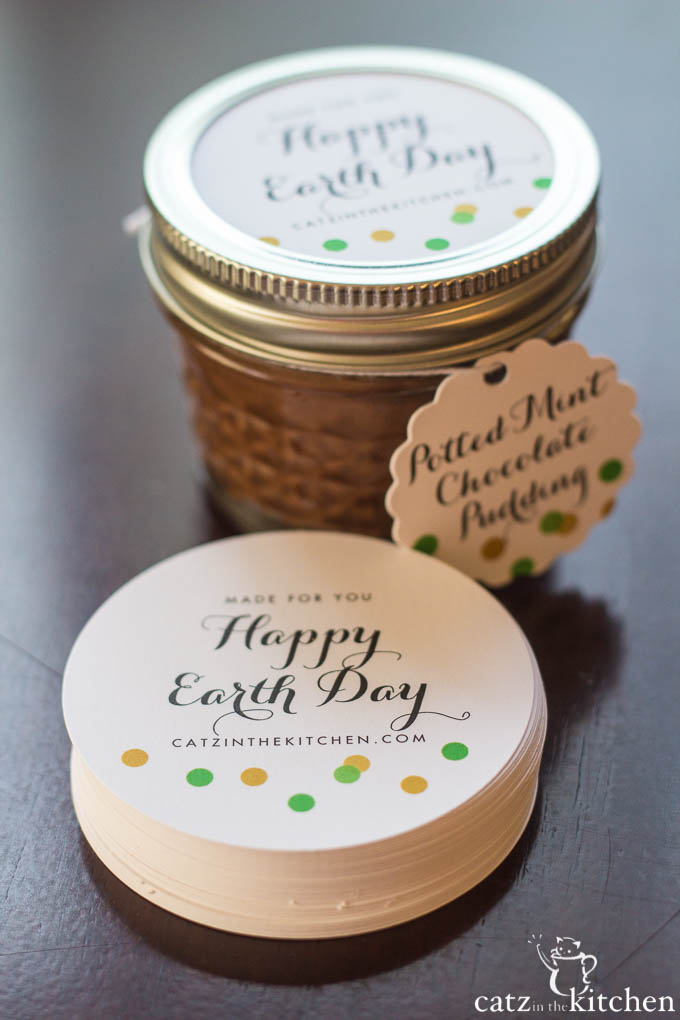 Potted Chocolate Mint Puddings | Catz in the Kitchen | catzinthekitchen.com #EarthDay