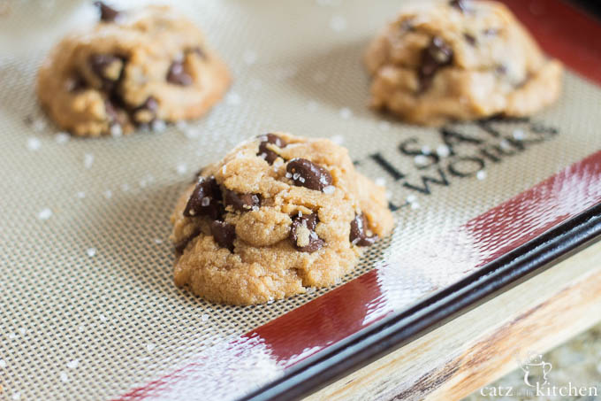 Chocolate Peanut Butter Cookies | Catz in the Kitchen | catzinthekitchen.com | #cookies #fall #glutenfree