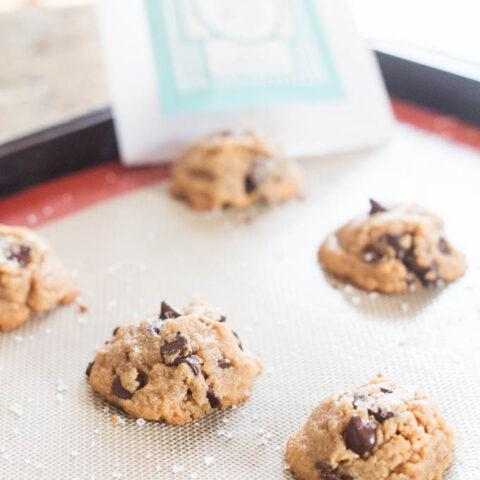 Chocolate Peanut Butter Cookies | Catz in the Kitchen | catzinthekitchen.com | #cookies #fall #pumpkin