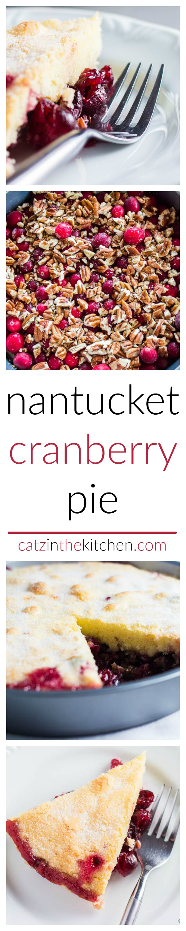 Nantucket Cranberry Pie | Catz in the Kitchen | catzinthekitchen.com | #dessert #pie #cranberries